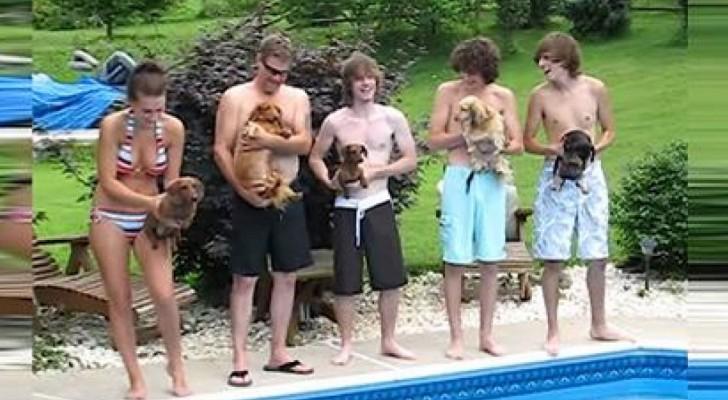 5 ragazzi tengono in braccio i loro cani per una gara che vi terrà... col fiato sospeso