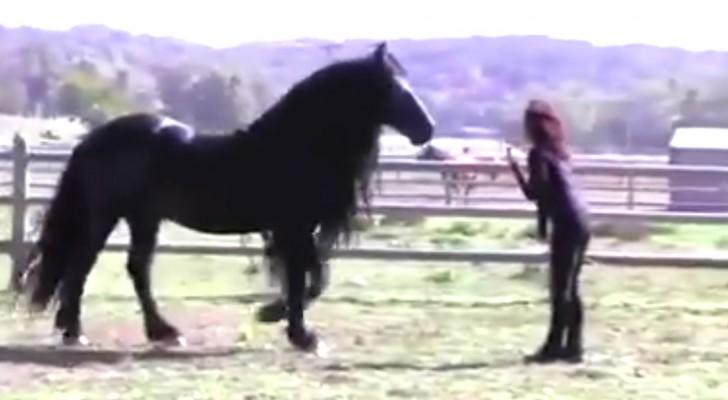 Die Trainerin ruft es: Dieses Pferd lässt euch sprachlos zurück