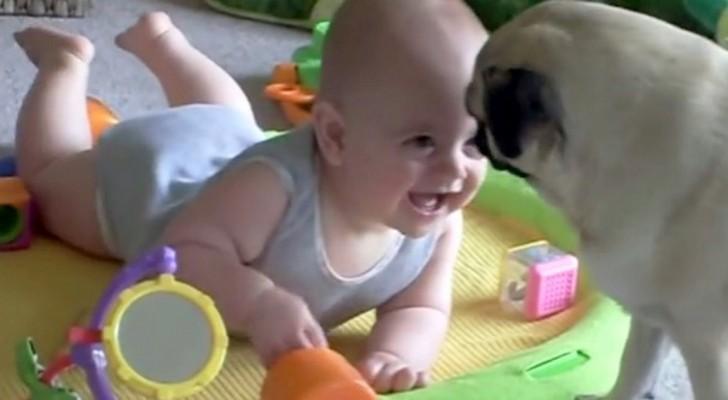 De hond speelt met de baby, en heeft een verrassing in petto die zelfs de moeder versteld doet staan!