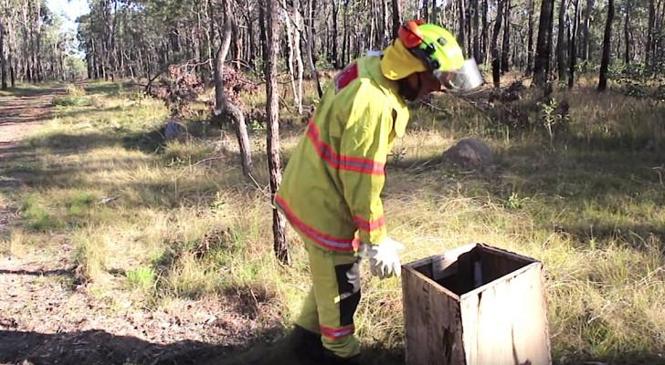 Een brandweerman vindt een doos in het bos... zijn leven is voorgoed veranderd!