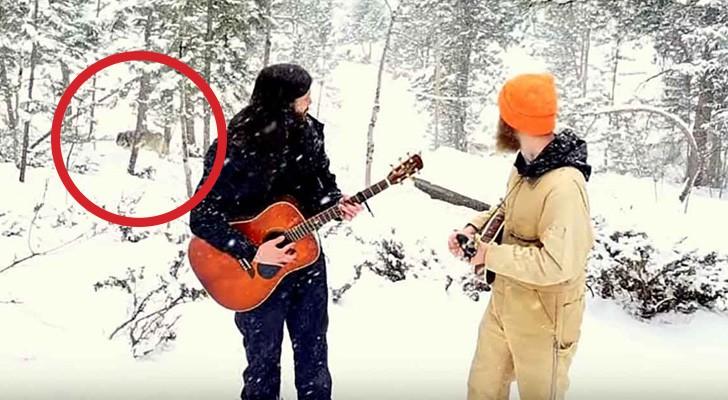 Stanno registrando un video musicale nel bosco, ma ricevono una visita inaspettata