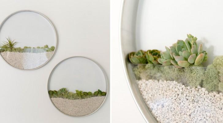 Mini-jardins muraux: une solution pleine de charme pour ceux qui aiment les plantes et la belle déco
