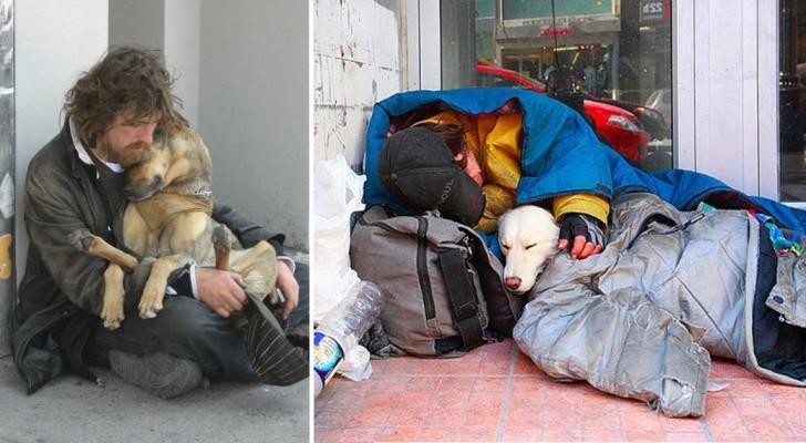 10 honden die stapelgek zijn op hun baasjes, ook als deze ze niets te bieden heeft