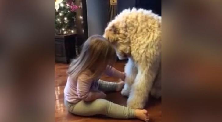 Dit kind gaat voor de hond zitten en weet zelfs haar ouders te verbazen!