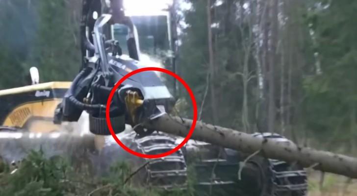 Die Leichtigkeit, mit der diese Maschine Baumstämme sägt und verarbeitet, ist unglaublich