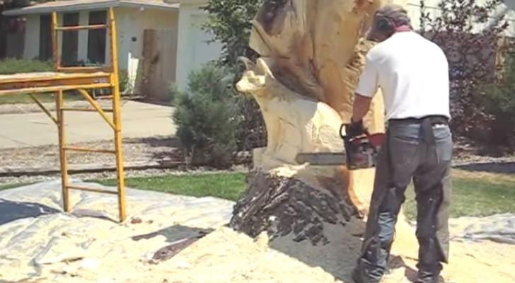 Han börjar såga ett gammalt träd med motorsågen. Det slutliga resultatet? Ni kommer inte att tro på det!