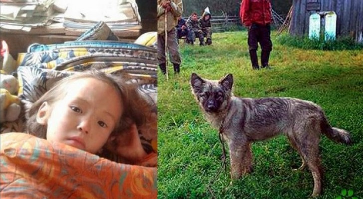 Dankzij haar hond wist ze 11 dagen te overleven in het bos: dit waargebeurde verhaal kan met recht een wonder worden genoemd
