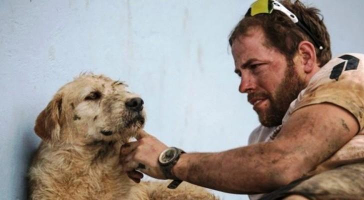 Un cane randagio incontra un gruppo di atleti e supera prove estreme pur di seguirli