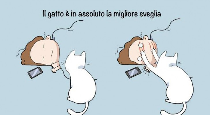 I 10 vantaggi dell'avere un gatto spiegati con delle vignette esilaranti