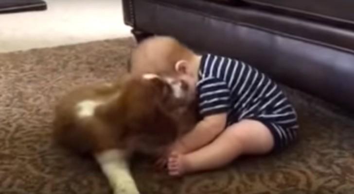 Een baby en een pup ontmoeten elkaar en er gebeurt meteen iets MAGISCH