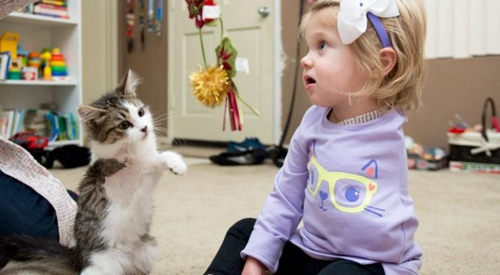 Une petite fille perd un bras à 10 mois, mais un ami spécial comme elle arrive à la maison
