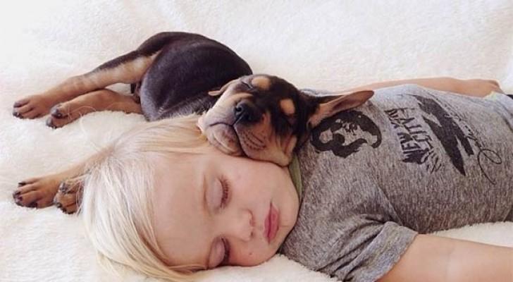 5 buoni motivi per condividere il letto con il cane... con le adeguate accortezze!