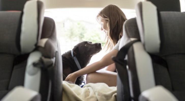 Bevor sie ihren Hund einschläferten, schenkten sie ihm den schönsten Tag seines Lebens