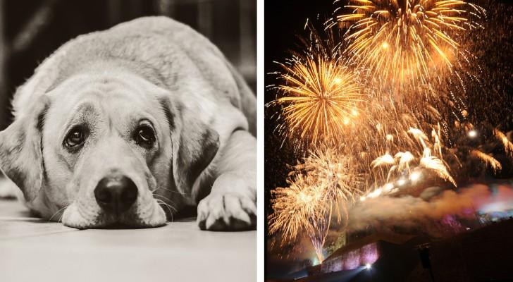 Le città vietano i fuochi d'artificio: ecco in arrivo i botti... SILENZIOSI