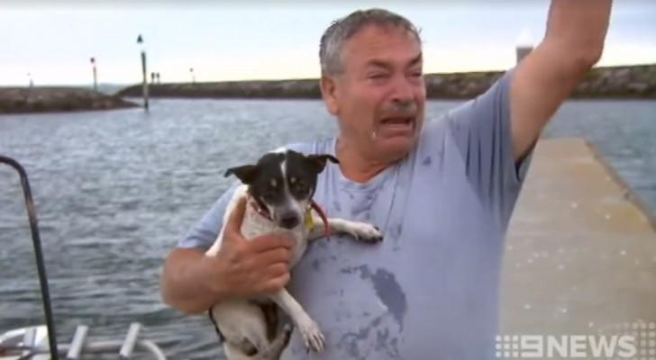 Zijn hond is overboord geslagen... dan meert er een boot aan met een opmerkelijk verhaal