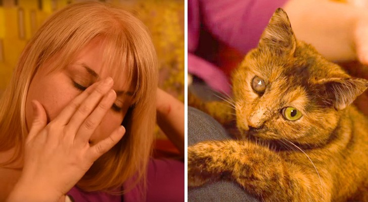 Una ragazza adotta un gatto: quando vede da dove viene rimane scioccata