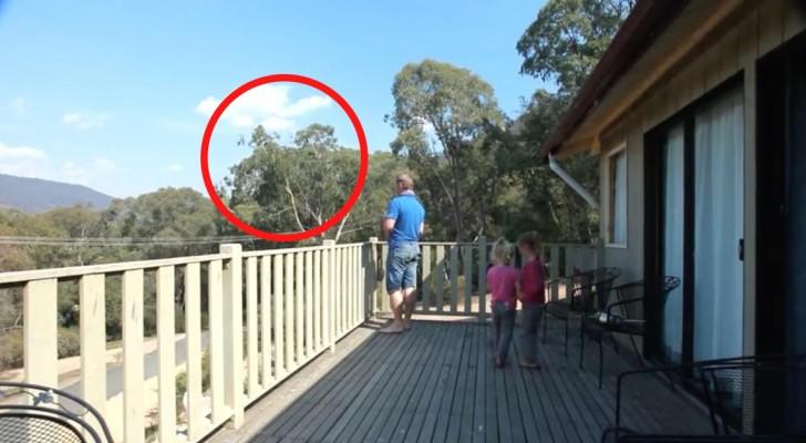 Mama filmt papa en dochters op het balkon... Dan gebeurt er iets SPROOKJESACHTIG!