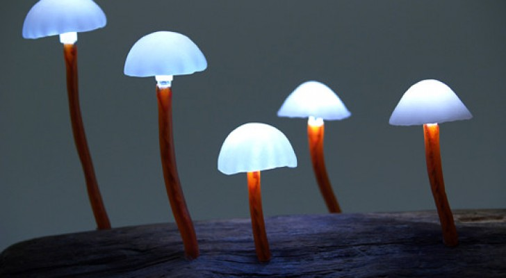 Queste straordinarie lampade LED trasformano la tua casa in una foresta incantata