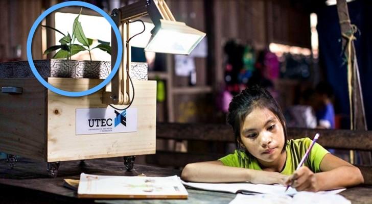 In Peruanischen Dörfern wird Licht aus der Fotosynthese der Pflanzen generiert. Und so geht's...