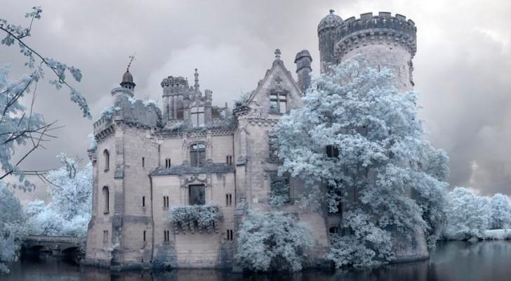 La natura si riappropria di un meraviglioso castello reale francese: il risultato è magico