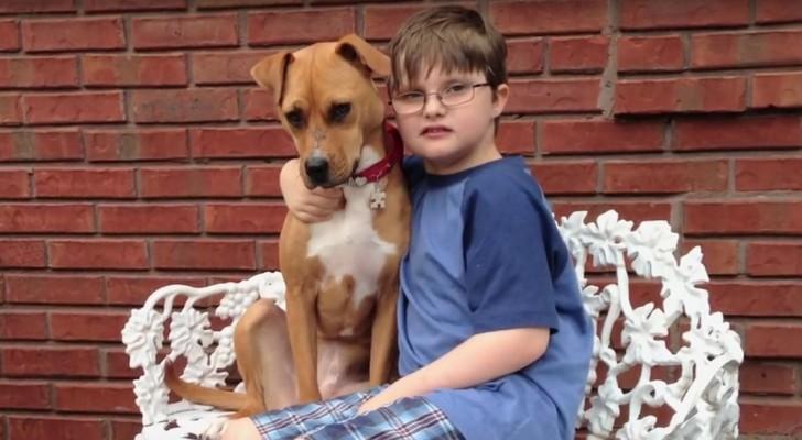 Una pitbull es adoptada de la familia de un niño autista: el efecto es sorprendente