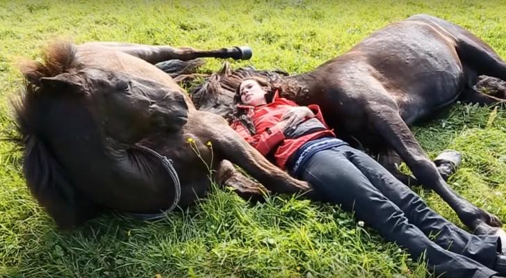 Tjejen ligger ner i gräset med två gigantiska hästar ... Och de har en underbar relation!