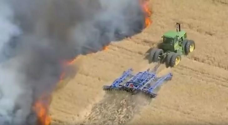Ein Brand zerstört die Ernte: So stoppt der Landwirt ihn. Sehr mutig