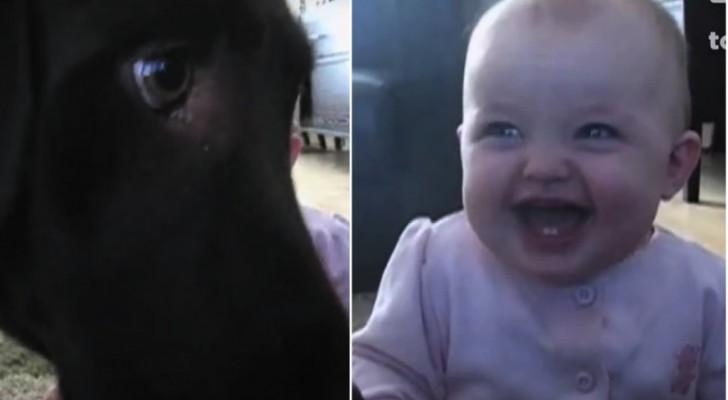 De hond eet popcorn... en het kind? Die kan niet stoppen met lachen!