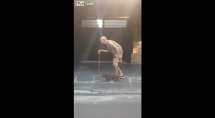 Un uomo anziano cammina in strada: ecco come il cane gli dimostra tutta la sua amicizia