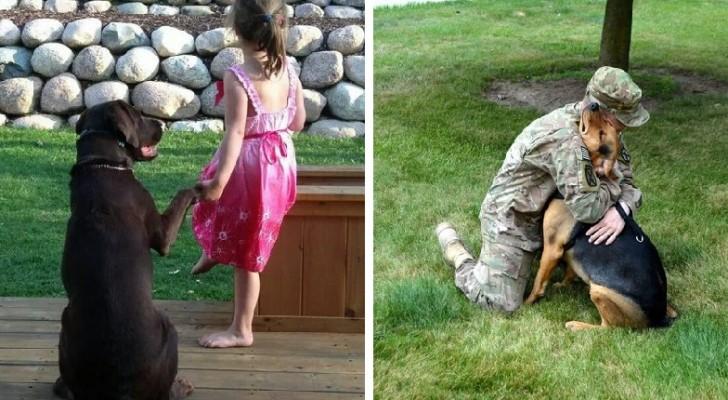 Ecco come e perché un cane diventa un membro INSOSTITUIBILE della famiglia