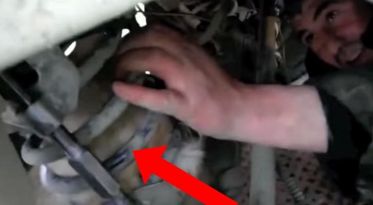 Hij hoort zacht gekreun onder een vrachtwagen komen: een weerloos schepsel heeft hulp nodig!