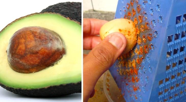 Dopo aver letto questo articolo non butterai più via un seme di avocado!