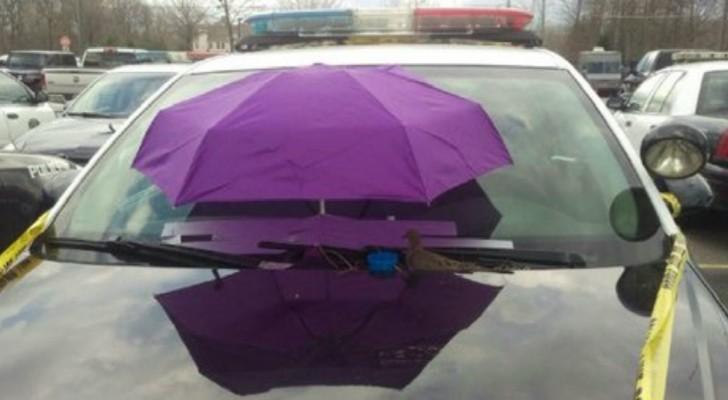 Politieagenten Plaatsen Een Paraplu Op De Voorruit... Om Wel Een Hele Aparte Reden