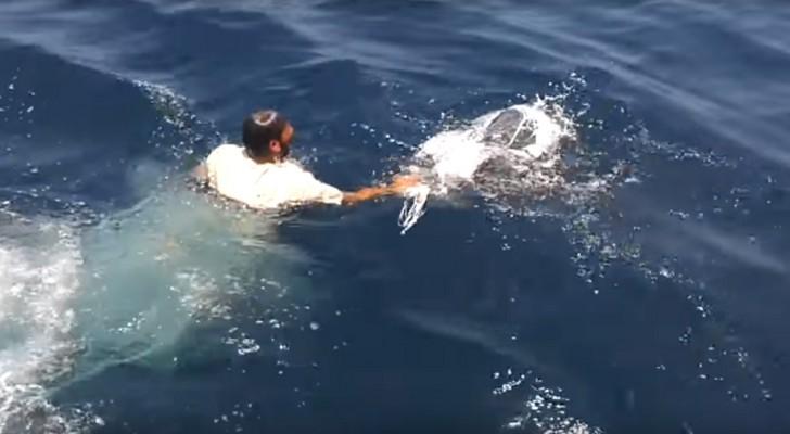 Een visser duikt volledig gekleed in het water... de reden hiervoor is een applaus waard!