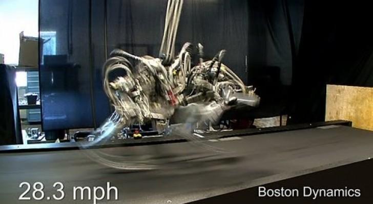 Le robot le plis rapide de Usain Bolt