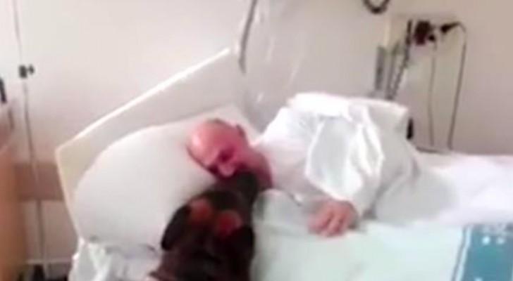 Depuis qu'il est hospitalisé, il ne voit pas son chien, mais une infirmière obtient l'impossible
