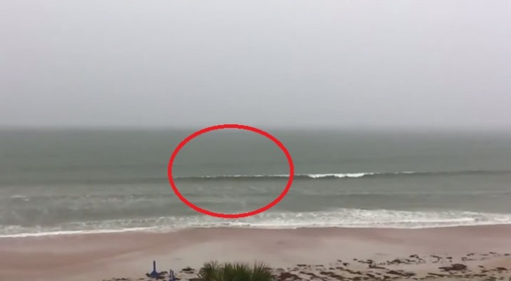 During a storm on a beach --- keep your eye on the incoming wave!