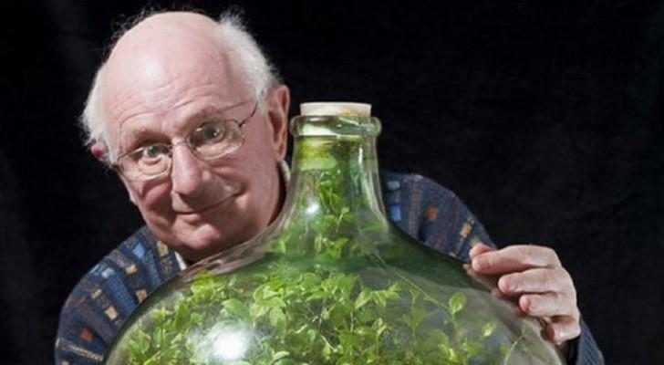 1960 hat er einige Samen in einer Flasche versiegelt: Hier das Resultat nach mehr als einem halben Jahrhundert