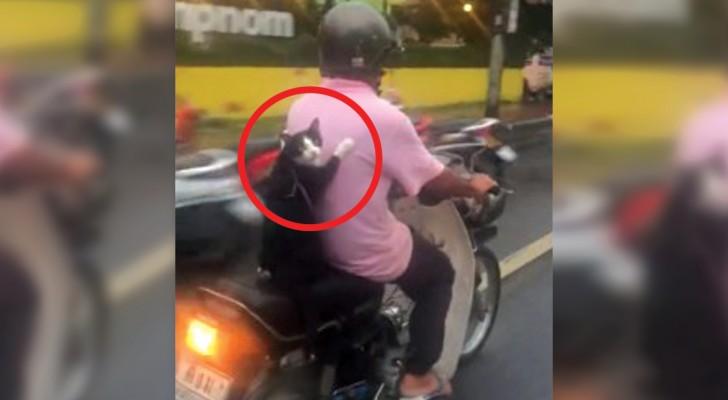 Filmam um motociclista com um passageiro muito diferente… :)