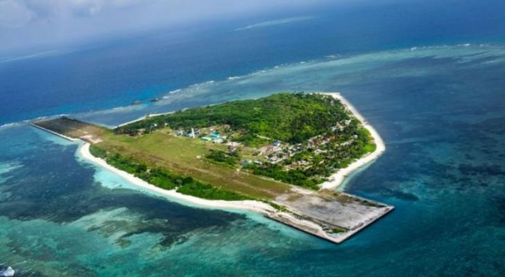 Centenares de peces muertos y hombres envenenados: por eso las aguas de esta isla fueron contaminadas