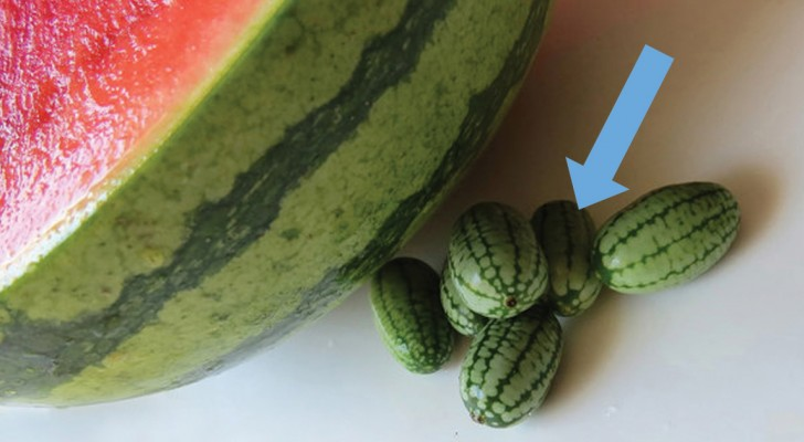On dirait une petite pastèque, mais ce n'est pas le cas: voici le fruit le plus sympa - et inconnu - qui existe