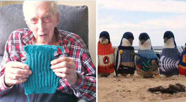 Ecco come l'uomo più anziano d'Australia è riuscito a salvare centinaia di pinguini