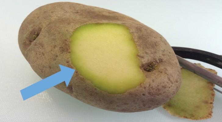 Mangiare patate verdi o con i germogli fa davvero male alla salute?