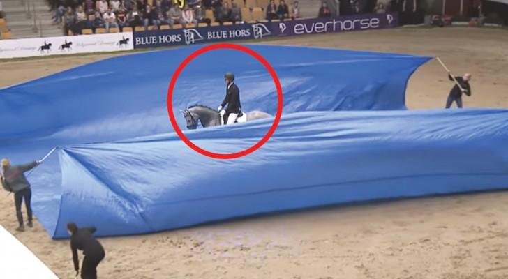 Il cavallo fa il suo ingresso, ma è quando si alzano i teli che i giudici rimangono senza parole. Wow!