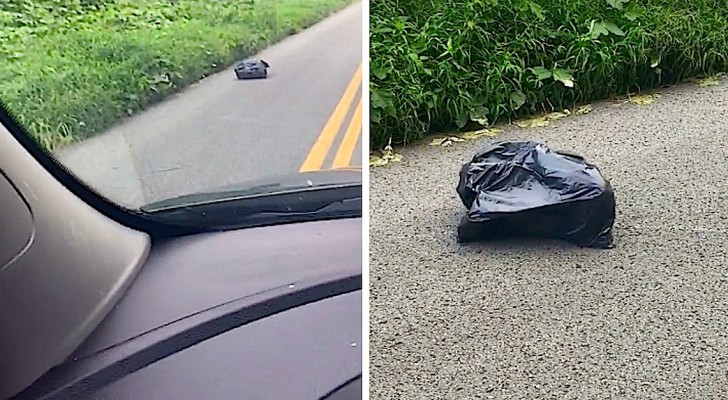 A driver sees a closed black plastic garbage bag MOVING ON THE ROAD...